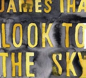 [取寄]James Iha / Look To The Sky[新品LP]