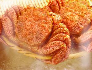 オホーツク産 冷凍毛蟹360g×5尾