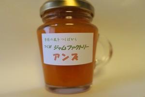 杏子ソース