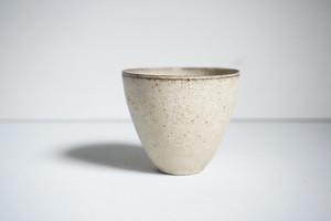 遠藤岳 free cup IV