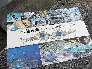 池間の海のいきものカレンダー2015(バックナンバー)