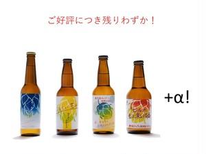 「横手産ホップシリーズ」+α!飲み比べ5種×1本【クラフトビール】【数量限定】【アソートセット】