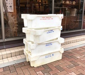 Visafslag Storage Box オランダ