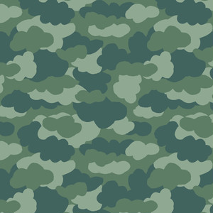 camouflage_009