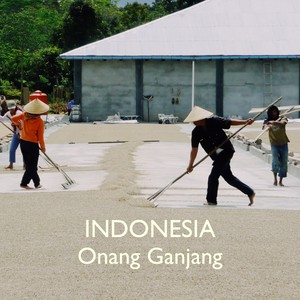 INDONESIA -中深煎り- 200g