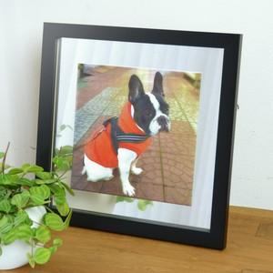 写真からつくる!オリジナルパブミラー 猫・犬 正方形L 22cm角