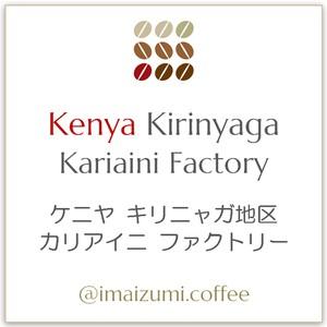 【送料込】ケニヤ キリニャガ地区 カリアイニ ファクトリー - Kenya Kirinyaga Kariaini Factory - 300g(100g×3)