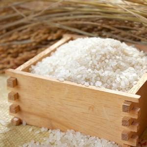 秋田県産 特別栽培米【 あきたこまち 】 1 ㎏