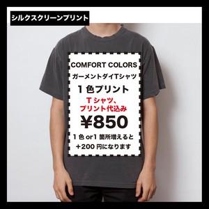 Comfort Colors コンフォートカラーズ ガーメントダイTシャツ (品番1717)