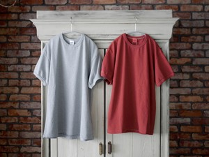 THE UNION / PLAIN TEE  (  ASH GRAY  / RED  )