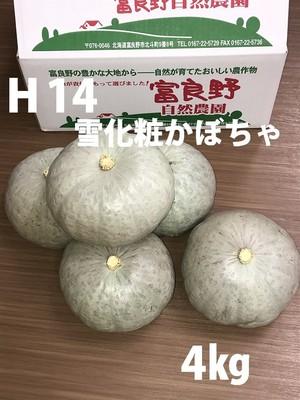 H14 雪化粧カボチャ(2~3個)4kg以上