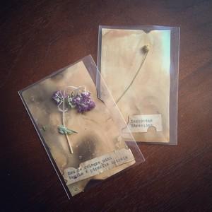 植物標本、ハーバリウム
