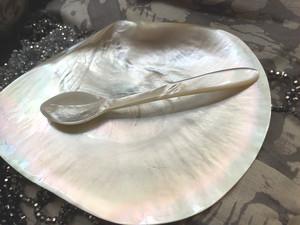 白蝶貝のスプーン