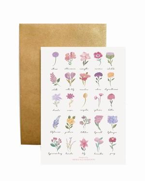Crard + Envelope カード + 封筒