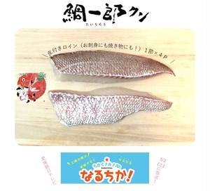 天然を超える高級鯛!やみつきもちもち食感の「鯛一郎クン皮付きロイン4P」お刺身にも焼き物にも!・冷蔵