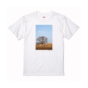 【寄付対象】【CHIKUGO百景】河川敷に佇む木Tシャツ(送料無料)