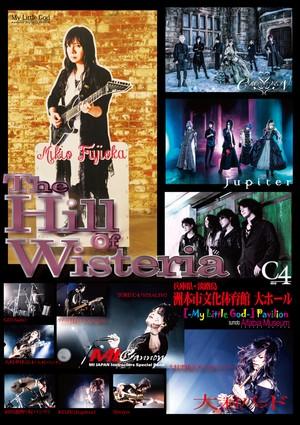 藤岡幹大 追悼作品 [-The Hill Of Wisteria-] (DVD2枚組)