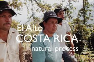 COSTA RICA【natural】-city- 100g
