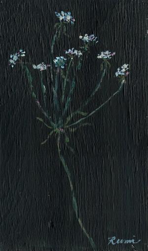 白い小さな花たち