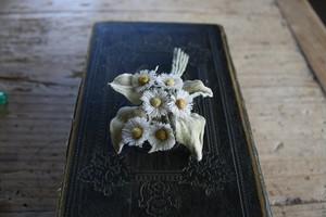 小さな白いハルジオン布花ブローチ