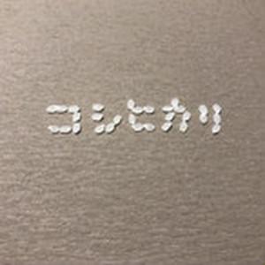 【定期便】会津喜多方・特別栽培米こしひかり玄米【定期便特別価格】