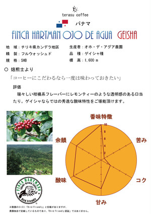 【数量限定:予約販売 12月26日(火)出荷予定】パナマ オホ・デ・アグア農園 「ゲイシャ種」 Midium (50g)