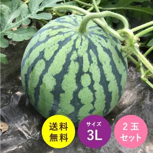 送料無料!熊本県植木産すいか(3L)2玉セット