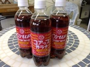 北海道の魂の叫びだぜ!!コアップガラナ 500ml ペットボトル24本 小原商店