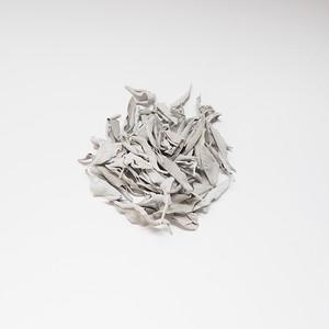 【薬草】ホワイトセージ 10g