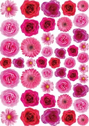 Princess flower転写紙【フランポワーズ】パーツver.