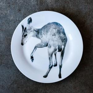 動物たちの飾るお皿  「小鹿」