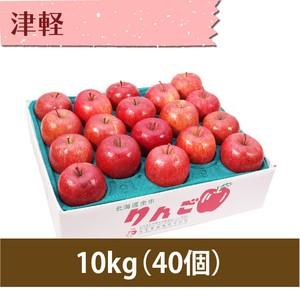 【りんご】津軽 10kg(40個)