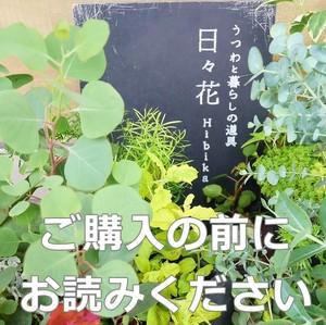 ◆ご購入前にお読み下さい◆