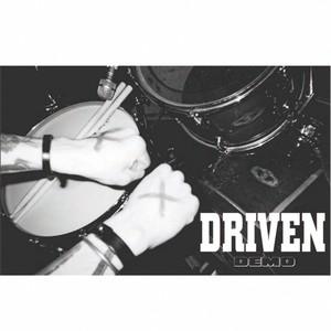 DRIVEN/demo