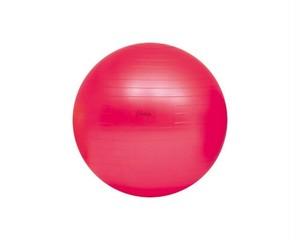 【ボディボール】 55(赤) H-7261