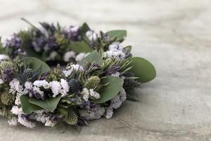 Eryngium wreathe