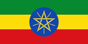 エチオピア アラカ ナチュラル