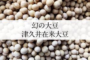 かながわ県ブランド認定 希少な「幻の大豆」津久井在来大豆 ー1kgー