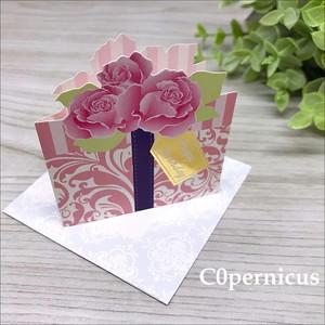 誕生日カード/メッセージカード 0315-3 浜松雑貨屋 C0pernicus  便箋・封筒レターセット