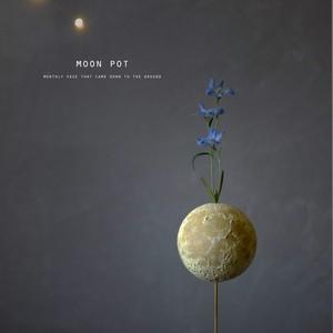 moon pot (一輪挿し)
