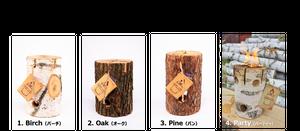 Campfire スウェディッシュトーチ (4種セット) アウトドア用品・キャンプ用品・焚火