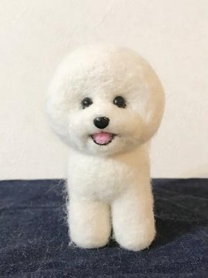 羊毛フェルト ビションフリーゼ 犬