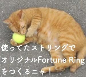 【オーダーメイド】Fortune Ring アンクレット(オリジナル)