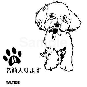 マルチーズB【カッティングシート】