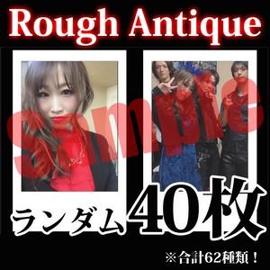 【チェキ・ランダム40枚】Rough Antique