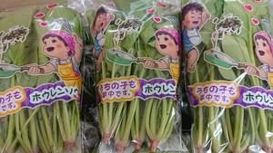 ホウレンソウ【栽培期間中農薬・化学肥料不使用】 1kg 200g×5袋 セット