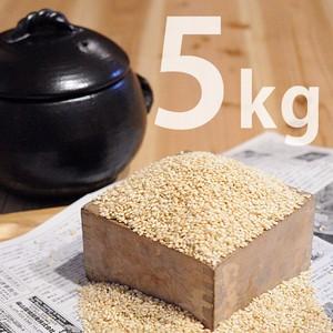 【玄米】丹波産もち米(5kg)