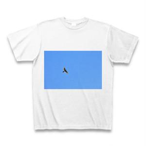 【写真】青空と鳥T