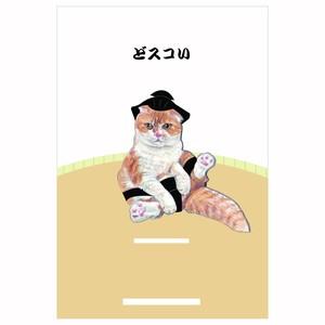 ポストカード(どスコい)