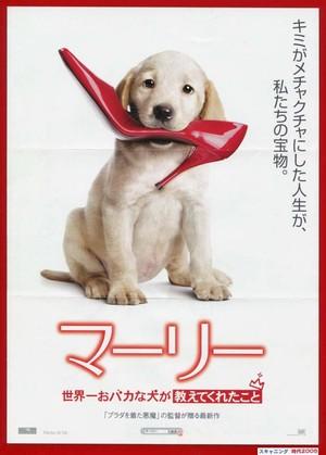(1)マーリー 世界一おバカな犬が教えてくれたこと